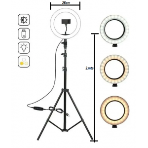 "10"" LED Ring Light with 2M..."