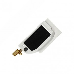 Loudspeaker Module For...